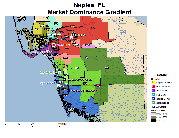 Market Dominance Map